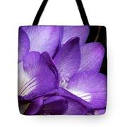 Purple Springtime Tote Bag