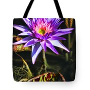 Purple Star Water Lily  By Diana Sainz Tote Bag