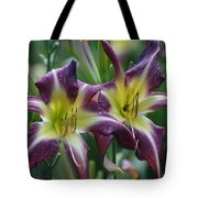 Purple Stargazers Tote Bag