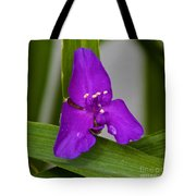Purple Triangle Tote Bag