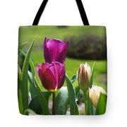Purple Tulips Garden Art Print Tulip Flowers Tote Bag