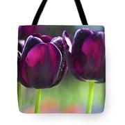 Purple Tulips Tote Bag by Heiko Koehrer-Wagner