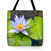 Purple Water Lily In Pond. Tote Bag