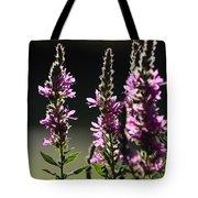 Purple Wild Flowers - 1 Tote Bag