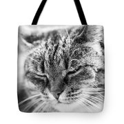 Purring Cat Tote Bag