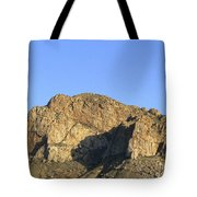 Pusch Ridge With Saguaro Tote Bag