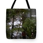 Pussy Willow In The Pines Tote Bag
