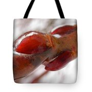 Pussy Willow Preserved Tote Bag