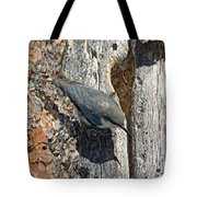 Pygmy Nuthatch At Nest Tote Bag