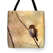 Pygmy Owl - The Watcher Tote Bag