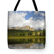 Pyramid Mountain And Cottonwood Slough Tote Bag