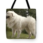 Pyrenean Mountain Dog Tote Bag
