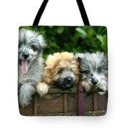 Pyrenean Sheepdogs Tote Bag