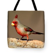 Pyrrhuloxia Cardinalis Sinuatus Male Tote Bag