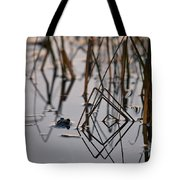 Pythagoras The Frog Tote Bag
