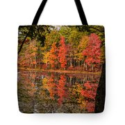 Quabbin Reservoir Fall Foliage Tote Bag