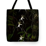 Quad Ghost Orchid Tote Bag