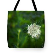 Queen Anne S Lace Single Tote Bag