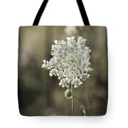 Queen Annes Lace - 3 Tote Bag