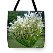 Queen Anne's Lace Flower Unfolded Tote Bag
