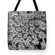 Queen Anne's Lace In Black And White Tote Bag