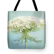 Queen Anne's Lace Wildflower Tote Bag