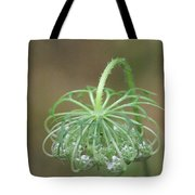 Queen Ann's Lace Tote Bag
