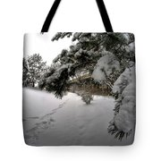 Queen City Winter Wonderland After The Storm Series 0029 Tote Bag