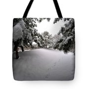 Queen City Winter Wonderland After The Storm Series 0030 Tote Bag