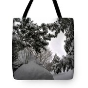 Queen City Winter Wonderland After The Storm Series 0031 Tote Bag