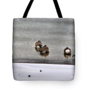 Queen City Winter Wonderland After The Storm Series 0043 Tote Bag