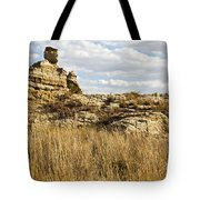 Queen Of Isalo  Madagascar Tote Bag