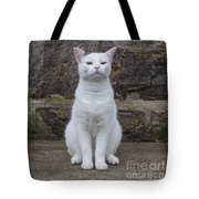 Queen Of The Castle Tote Bag