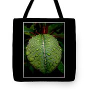 Quenched 2 Tote Bag