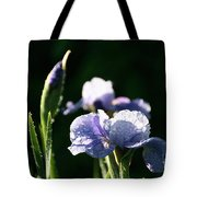 Quenched Overnight Tote Bag