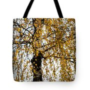 Quiet Charm Of Autumn Tote Bag
