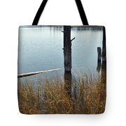 Quiet Day On Yellowstone's Goose Lake Tote Bag