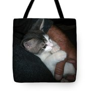 Quiet Time With Jackson Tote Bag