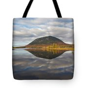 Quiet Waters 1507 Tote Bag