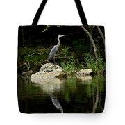 Quiet Waters Tote Bag