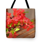 Quince Blossoms Tote Bag