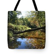 Quinnebaug Reflections  Tote Bag