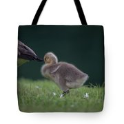 Quite Time Tote Bag