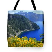 D2m5622-rabbit Brush At Crater Lake Tote Bag