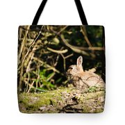 Rabbit In The Woods Tote Bag