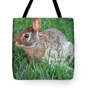 Rabbit On The Run Tote Bag