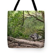 Raccoon At The Lake Tote Bag