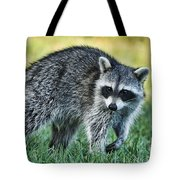 Raccoon Buddy Tote Bag