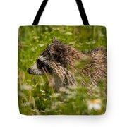 Raccoon In The Meadow Tote Bag