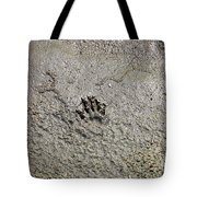 Raccoon Print Tote Bag